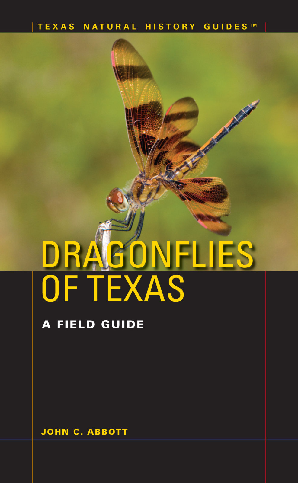 Book-Dragonflies of Texas