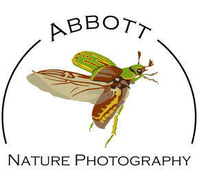 Abbott Nature