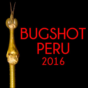BugSHot registration
